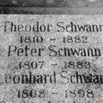 Grab Theodor Schwann Melaten